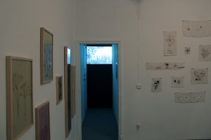 2- Exhibition view